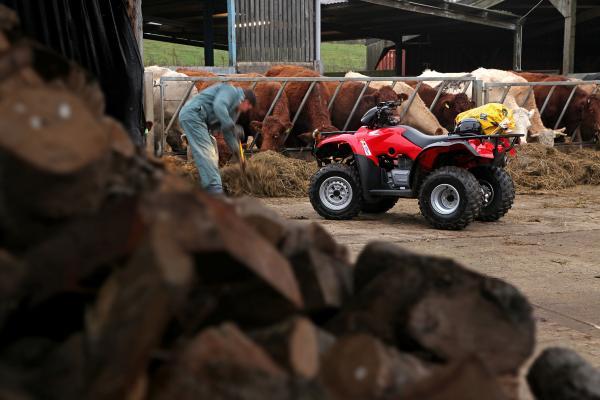 Trx250tm Quad Honda Quads Atvs All Terrain Vehicles
